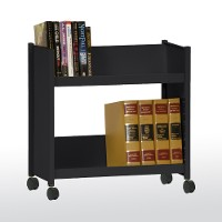 2 sloped-shelf booktruck